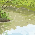 Danny Mooney 'Pond, Alexandra Park, 23/7/2015' iPad painting #APAD