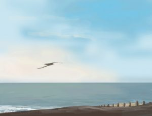 Danny Mooney 'Calm gull, 30/12/16' iPad painting #APAD