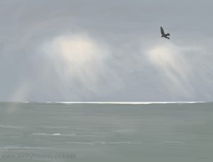 Danny Mooney 'Gull, 26/1/17' iPad painting #APAD